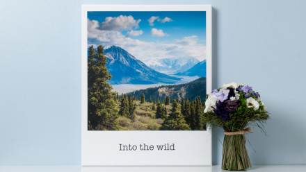 Read Polaroid Snap Shines and New Print App Launches