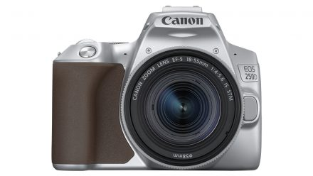 Read Canon EOS 250D: World's lightest DSLR with 4K and articulating screen