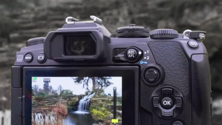 Read Olympus OM-D E-M1 Mark III: First Look