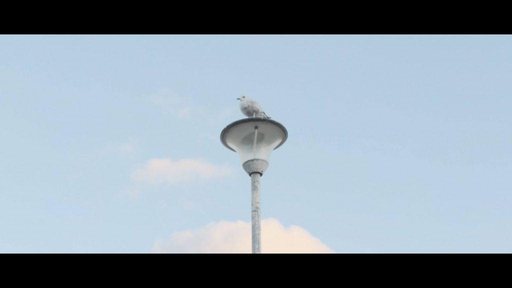 Sony Xperia 5 Cinema Pro Screen Grab - Venice CS