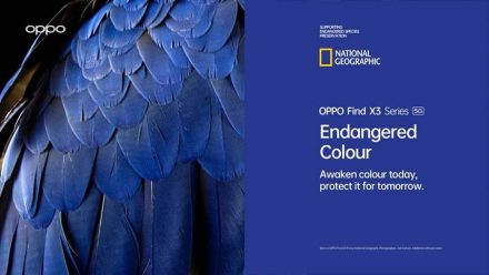 Read OPPO Smartphones & National Geographic Drive Awareness to Endangered Species