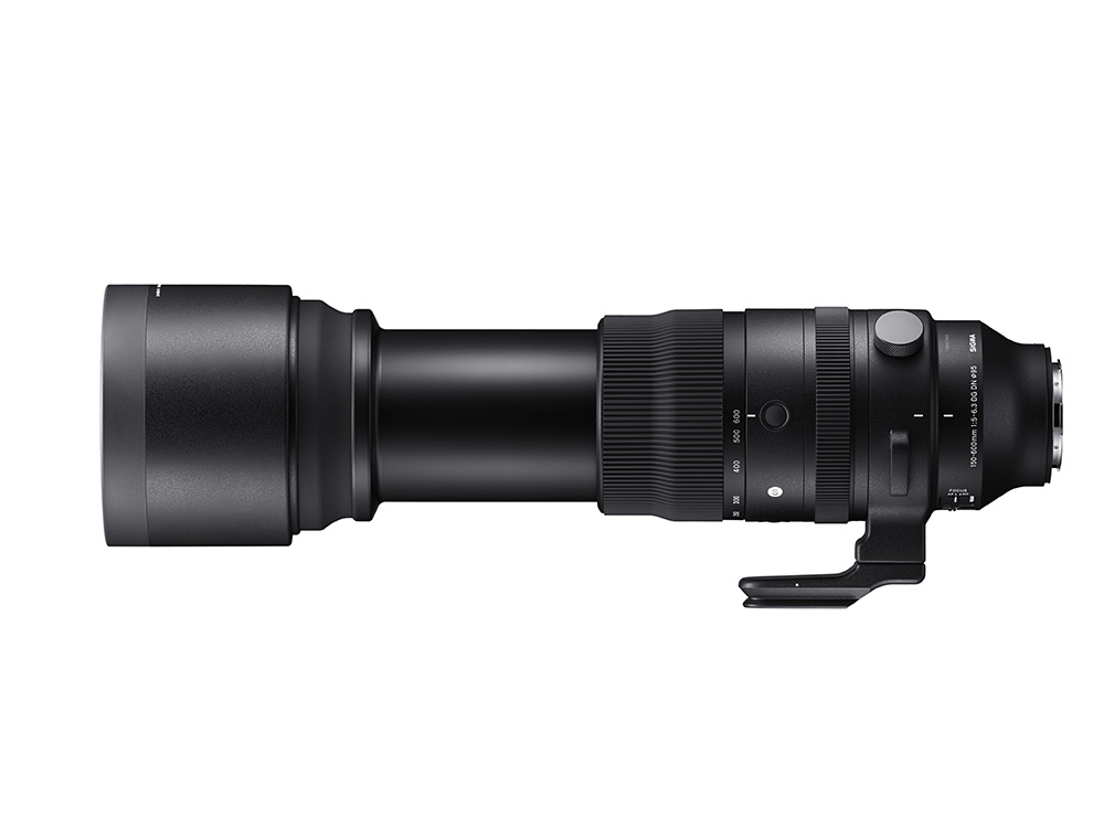 Sigma 150-600mm Lens Expanded